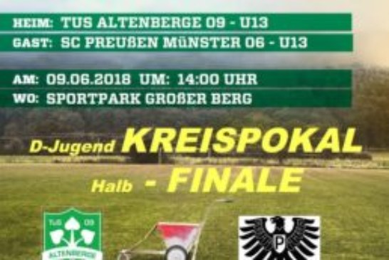 D-Jugend Kreispokal